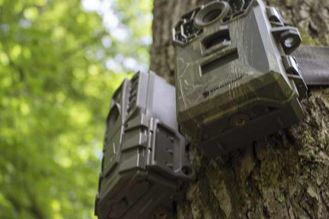 best budget trail camera 2019 Trail Camera On A Budget: Essential Buying Guide 2019