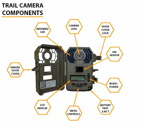 2bbe14318da Trail Camera On A Budget  Essential Buying Guide 2019